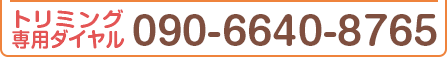 090-6640-8765